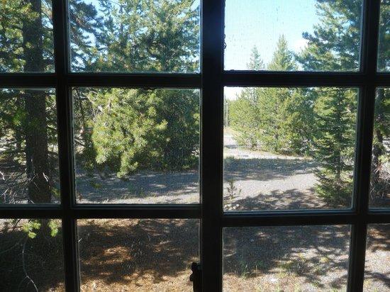 Grant Village Lodge : Vu de la fenêtre