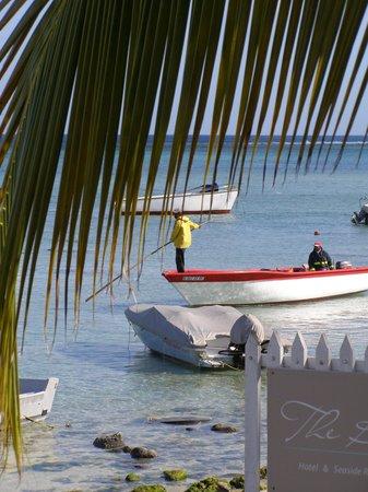 The Bay: vue sur le lagon et port de pêche au petit déjeuner