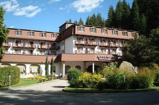 Alpen Hotel Weitlanbrunn: Hotel