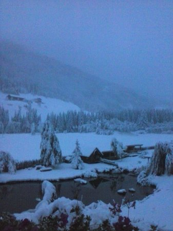 Alphotel Tyrol: Racine con la neve
