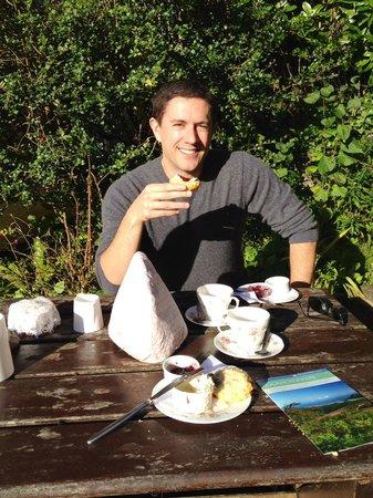 Periwinkle Tea-room: My cream tea at Selworthy