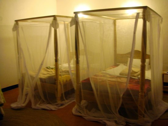 Country Lodge : mosquito nets