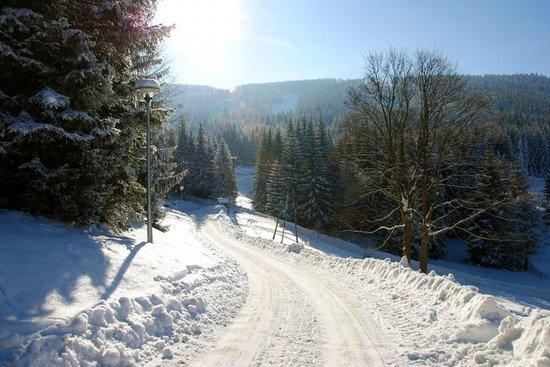 Pensjonat Puchaczowka: Sienna in winter