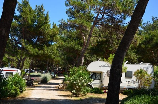 Poljana Camping Village Resort: Poljana camp