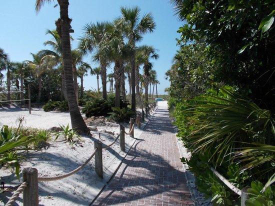 Tropical Beach Resorts: Walk to beach