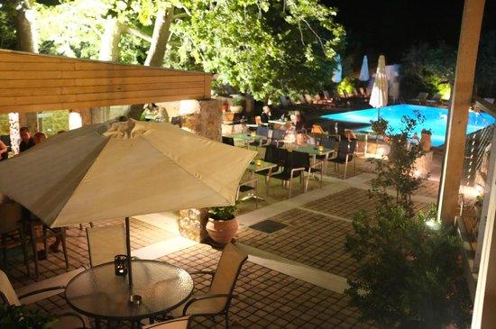 Astoria Hotel: Bar and pool