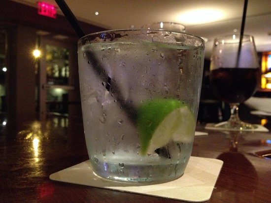 Loews Boston Hotel: They make the perfect Gin & Tonic at Cuffs