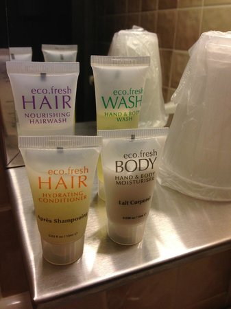 Roosevelt Inn: Bathroom amenities!