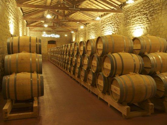 Hotel Ciudad de Haro: Muga Wine sorage
