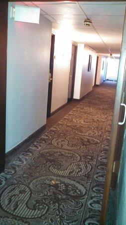 Ramada Plaza Albany: Hallway
