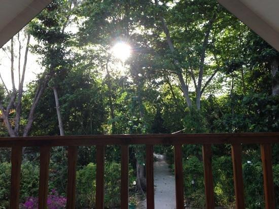 Tannette's Villa : Blick vom Balkon