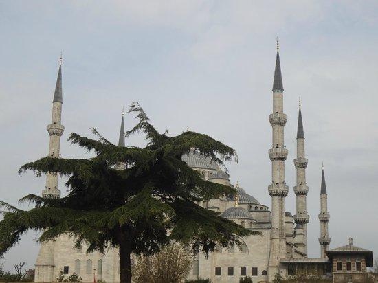 Hotel Aslan Istanbul: вид с веранды отеля