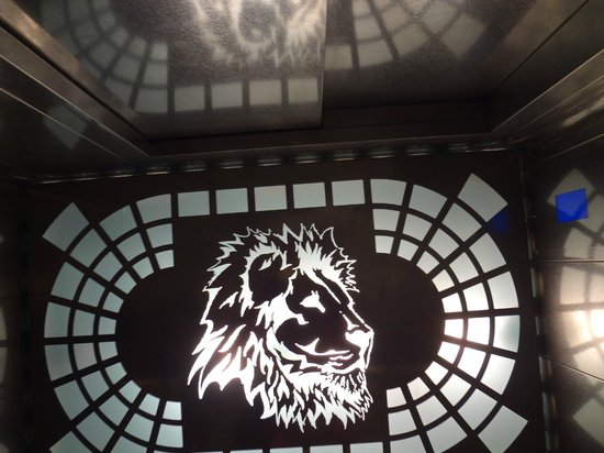 Hotel Aslan Istanbul: в лифте