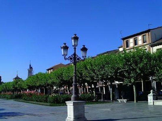 Plaza Cervantes: La armonia de Alcala