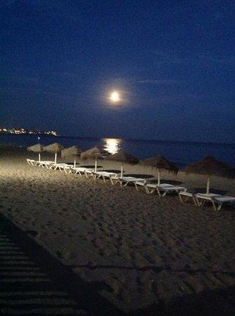 Chiringuito Oasis: Unas noches excelentes al lado del mar!