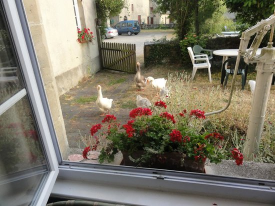 Manoir des Doyens: Another shot from Gite window