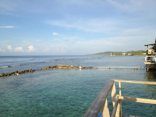 Reef House Resort: View from the deck