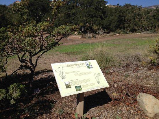 Santa Barbara Botanic Garden: Santa Barbara Botanical Garden