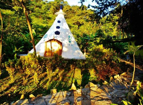 Foto de casa caracol xilitla inspiraci n y maravilla en for Caracol de jardin que come