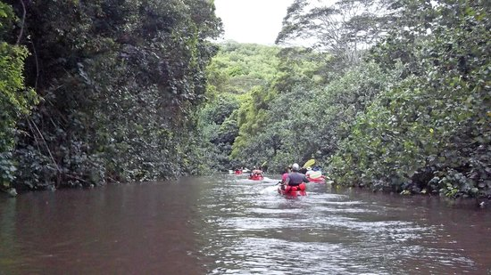 Wailua Kayak & Canoe: Entering Smaller Area of Wailua River