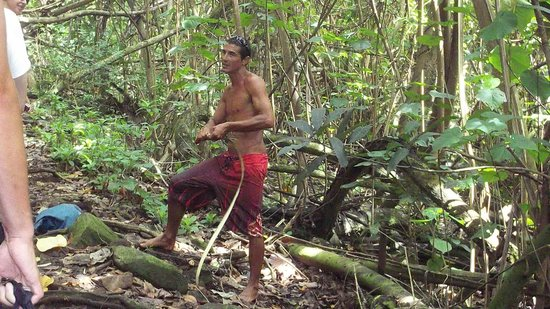 Wailua Kayak & Canoe: Forrest stops to give information about our surrounding to us