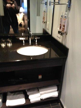 Hotel ALT Quebec: Black Bathroom