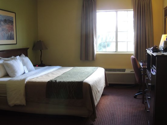Comfort Inn Flagstaff: room with king bed