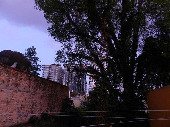 Hostel Guadalajara Hospedarte: vista del jardín desde una de las terrazas