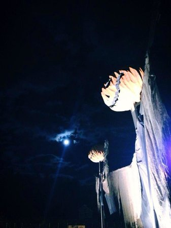 Cranmore Mountain Adventure Park: welcone to the ghoullog on a full moon lit night.