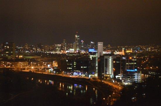 Crowne Plaza Vilnius: Вид на ночной Вильнюс