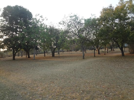 Pretoriuskop Restcamp: Área para piquenic