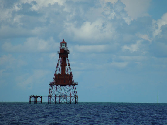 American Shoal Lighthouse : NEAT!I can't believe they would have someoe stationed to live here....
