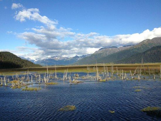 Alaska Railroad: Scenic View - Anchorage-Seward