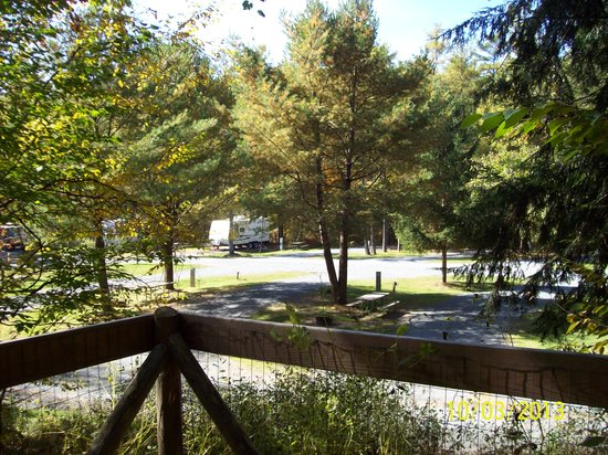 Quechee / Pine Valley KOA: From Dog run