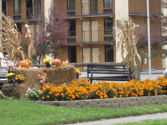 Timbers Lodge: Decorated for fall
