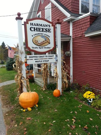 Harman's Cheese & Country Store: Great cheese