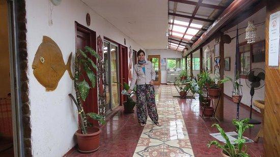 Residencial Tekena Inn : Hostal