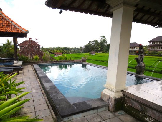 Ina Inn Bungalows: The Pool