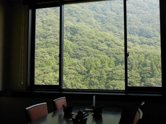 Hotel Hatsuhana : レストランからの深緑の眺め