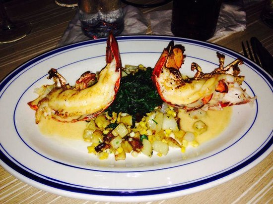 The Turtle Club - Naples : Amazing lobster, fantastic service with great prices