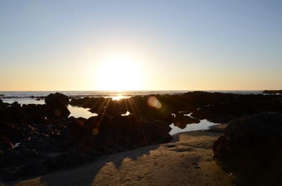 Blue Dolphin Inn : sunset