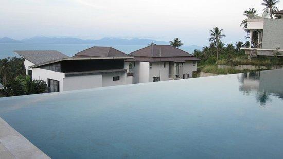 Code : Pool view