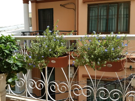Long Hostel: Balcony