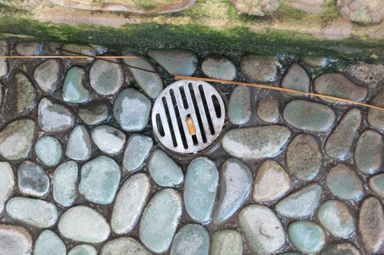 Coconuts Beach Resort : dirty drains