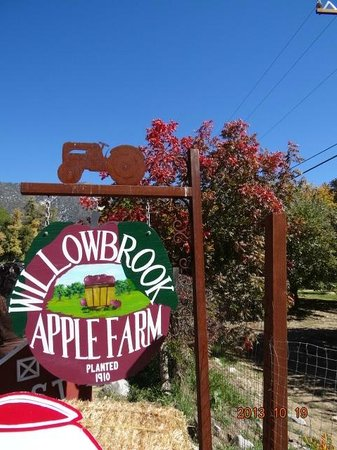 Willowbrook Farm : Front Sign