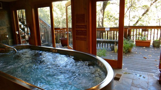 Yosemite Bug Rustic Mountain Resort: spa
