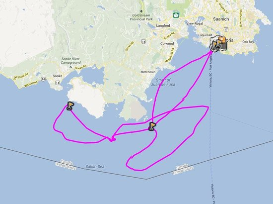 Eagle Wing Whale Watching Tours: Map of Route