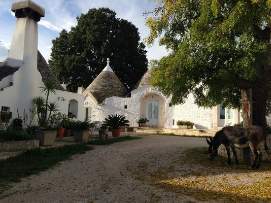Agriturismo Masseria Aprile : Casaro is the pointed trullo roof in the centre