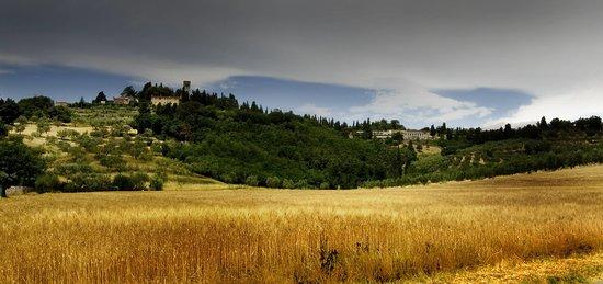 Bed & Breakfast Borgo della Rocca: La collina