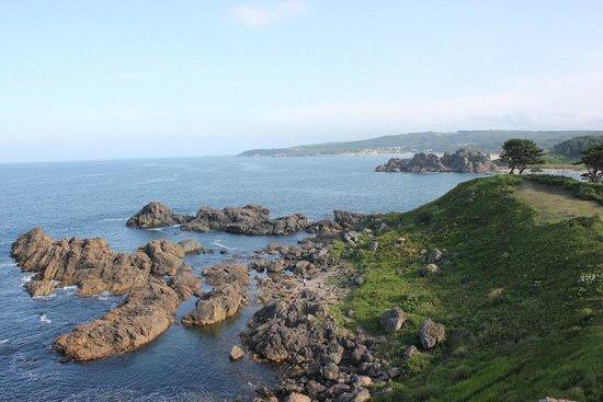 Ashigezaki Lookout: 展望台から種差海岸方面を望む